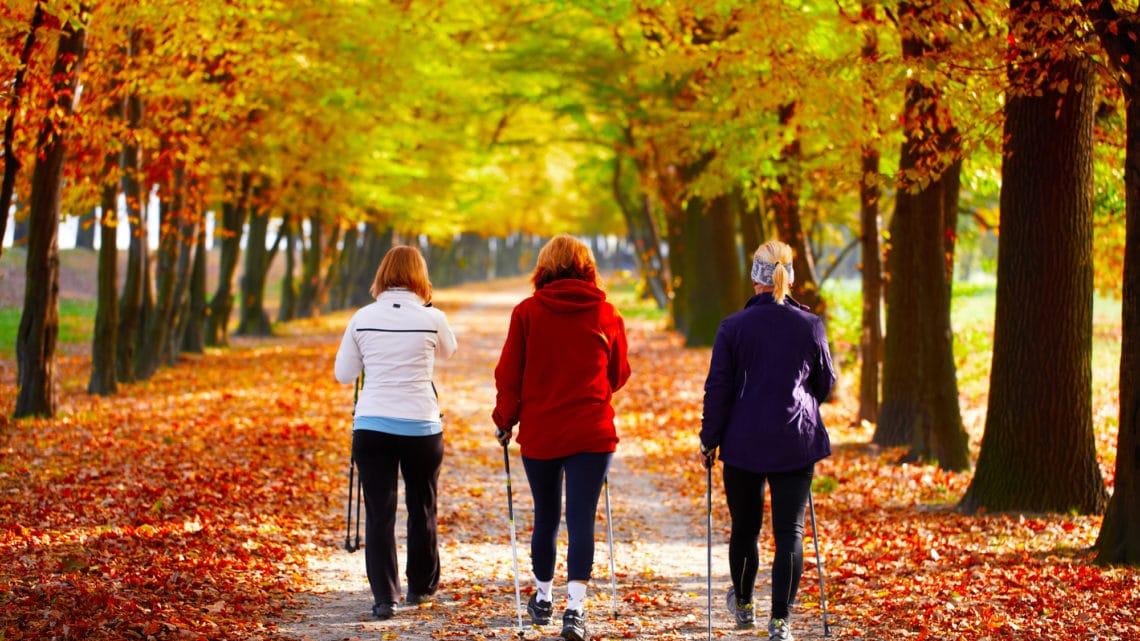 Gesund und fit mit Nordic Walking