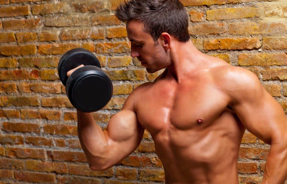 Bodybuilding – Die Synergie aus Training, Ernährung und Erholung