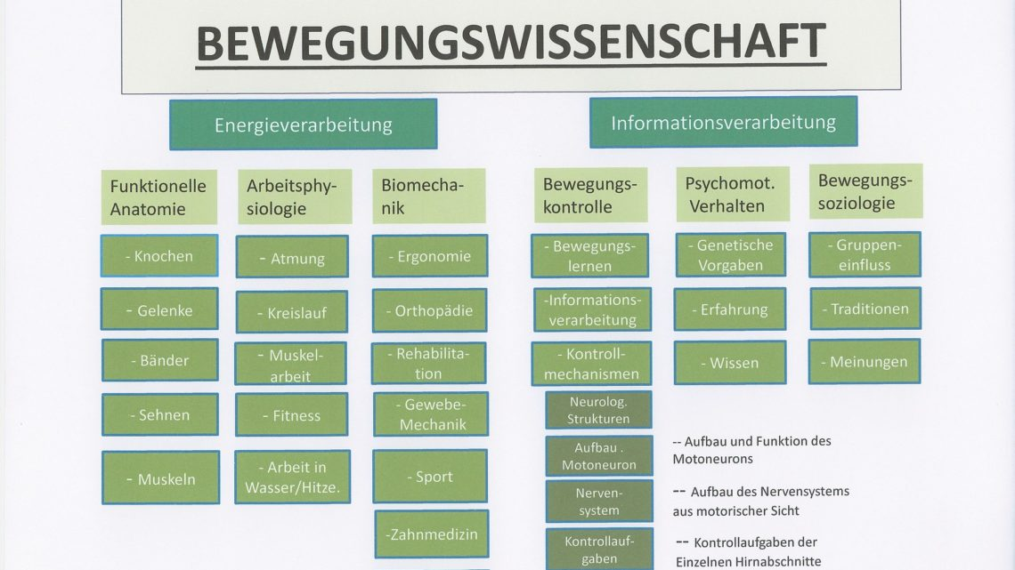 Was ist Angewandte Kinesiologie (Applied Kinesiology) ?